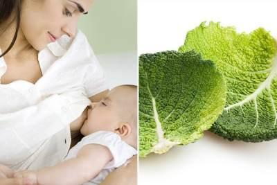Viral Sayur Kol Beku Bisa Atasi Payudara Bengkak Saat Menyusui, Begini Penjelasannya Moms