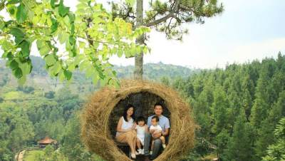 4. Dago Dream Park