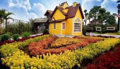 5. Rainbow Garden