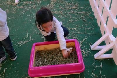 5 Langkah Mendidik Anak Agar Menjadi Penyayang Dan Ramah