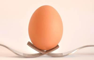 2. Telur