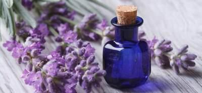 4 Cara Menggunakan Lavender Oil untuk Rambut, Ampuh Atasi Kerontokan Hingga Uban