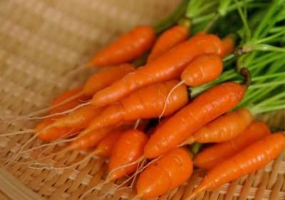 Berkebun di Rumah, Ini 7 Sayuran yang Bisa Dipanen dalam Waktu 30 Hari