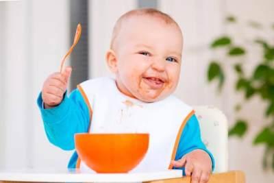 Manfaat Beras Merah Bagi Bayi