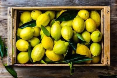 7. Bawang Bombay dan Lemon