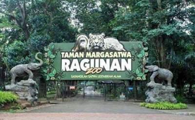 3. Kebun Binatang Ragunan