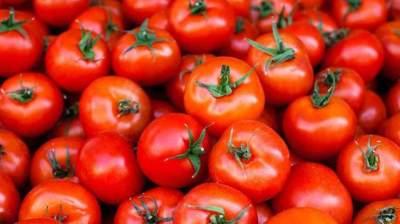 1. Tomat