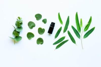 8 Essential Oil yang Aman dan Menenangkan Untuk Bayi