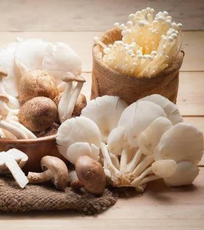 Tips Aman Makan Jamur Saat Hamil, Kenali yang Boleh dan Tidak
