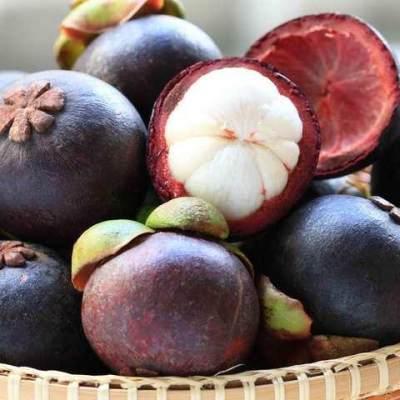 Fakta Nutrisi Buah Manggis, Anti Kanker dan Baik Untuk Kesehatan Kulit