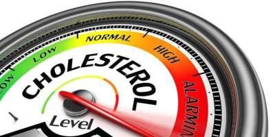 Kandungan Kolesterol