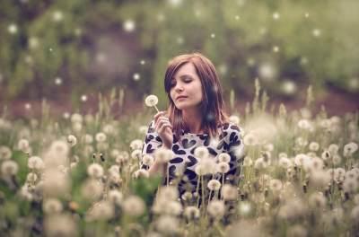 Secantik Bunganya, Ini Ragam Manfaat Dandelion Untuk Kesehatan dan Kecantikan