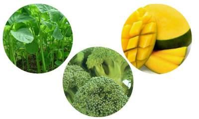 Bayam, Brokoli, dan Mangga