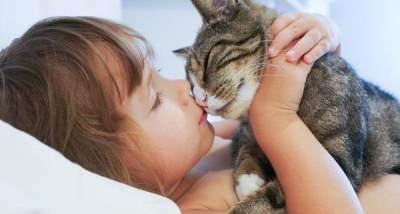 Meski Bisa Sebabkan Alergi, Memelihara Kucing Punya 5 Manfaat Untuk Anak