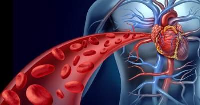 Meningkatkan Sirkulasi Darah