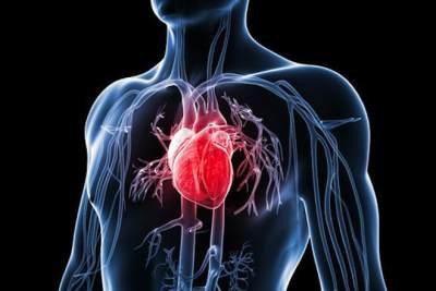 Meningkatkan Kesehatan Kardiovaskular