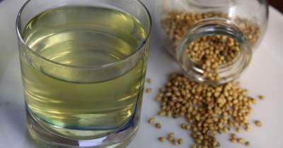6 Manfaat Air Rendaman Biji Ketumbar, Atasi Diabetes Hingga Anemia
