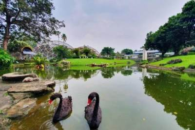 6 Wisata Edukasi di Jakarta yang Wajib Dikunjungi Bersama Si Kecil