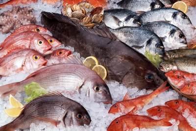 1. Kandungan Methylmercury pada Makanan Laut