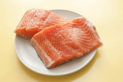 Ikan Salmon