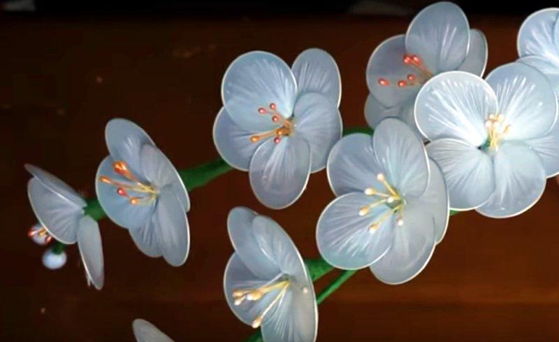 Membuat Bunga Cantik Dari Limbah Plastik Bagaimana Caranya