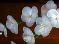 Membuat Bunga Cantik dari Limbah Plastik, Bagaimana Caranya?