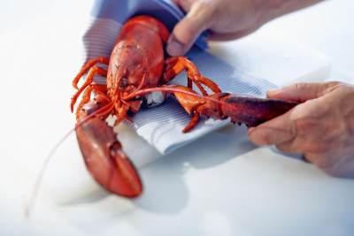 Cara Membersihkan Lobster