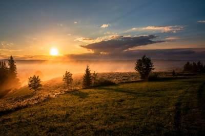 Sedekah Pagi dengan Shalat Dhuha, Apa Saja Manfaatnya?