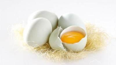 Manfaat kuning telur bebek untuk kesuburan