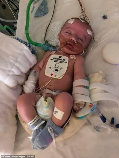 Kisah Haru Bayi Laki-laki yang Bangun dari Koma dan Tersenyum Pada Ayahnya