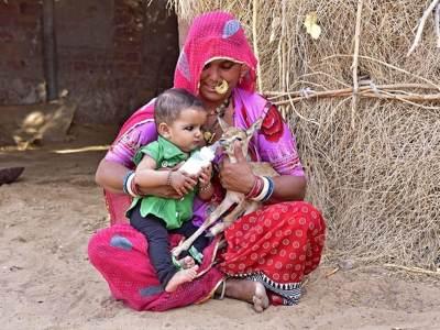 Menyusui Bayi Rusa Jadi Tradisi di India? Ini Kata Para Ahli