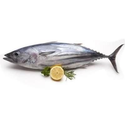 3. Tuna
