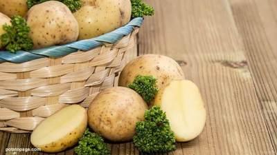 Efektif Turunkan Berat Badan, Begini Aturan dan Tips Diet Kentang