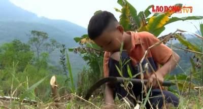 Sebatang Kara, Bocah 10 Tahun Ini Bercocok Tanam Demi Bertahan Hidup