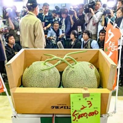 5. Melon