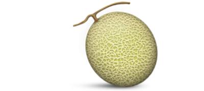 3. Melon