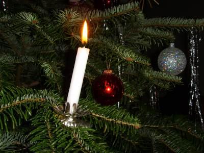 5 Fakta Menarik Pohon Natal, Sempat Dikritik Hingga Sebabkan Kebakaran