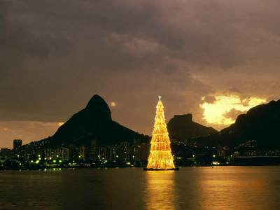 Daftar Pohon Natal Terbesar di Dunia, Ada yang Mencapai 85 meter!