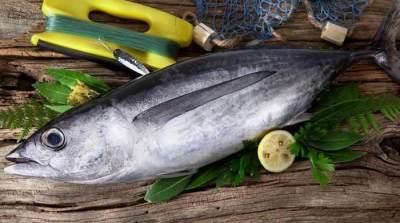 3. Tuna Albacore