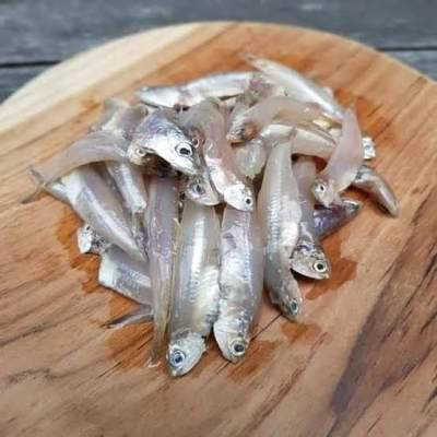 Tips Memilih Ikan Teri Untuk MPASI Bayi, Apa Saja Manfaatnya?