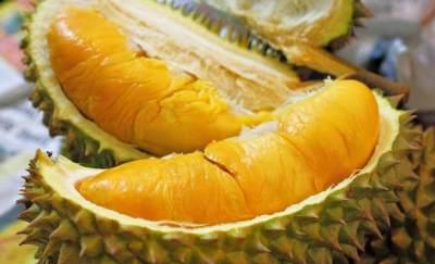 Mengenal 5 Durian Unggul dari Indonesia, yang Mana Favorit, Moms?