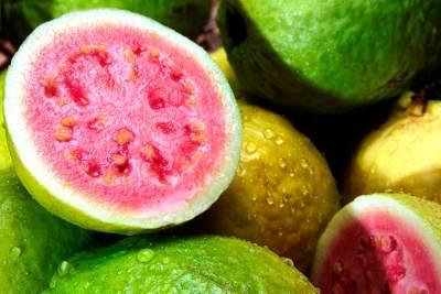 Kandungan Nutrisi Jambu Biji