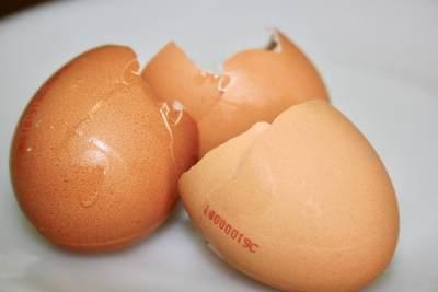 3 Cara Memanfaatkan Cangkang Telur, Usir Hama Hingga Atasi Kerutan di Wajah
