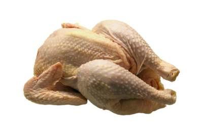 Cek Lipatan Sendi Ayam