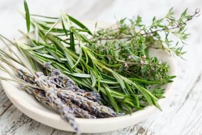 2. Daun Lavender