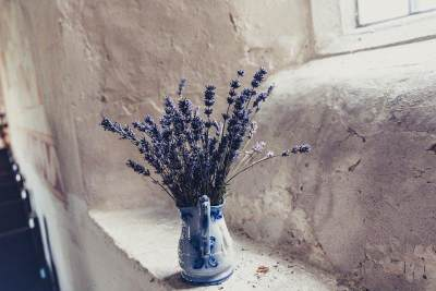 7. Lavender