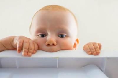 EVOO atau ELOO, Olive Oil Mana yang Lebih Baik untuk MPASI Bayi?