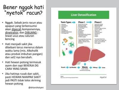 Viral Hati Ayam Tidak Sehat Untuk MPASI Bayi, Ini Kata Ahli